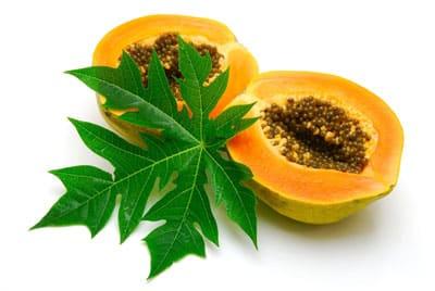 papaya fruit in populer fruit in America
