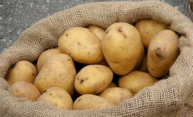 Potatoes Ayurvedic Medicine