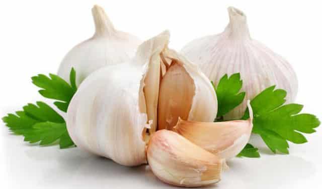 garlic Ayurvedic Medicine