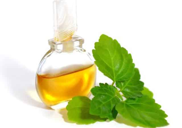 Benefits of patchouli essential Oil 1