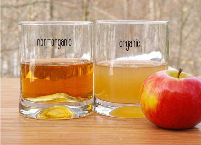 organic apple apple cider vinegar