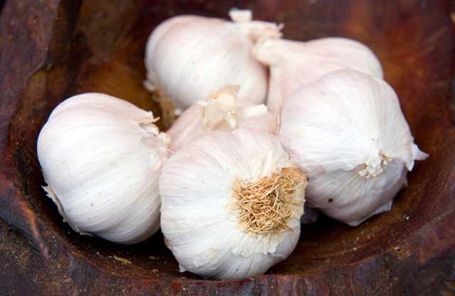 Home Remedies For Treating Giardiasis