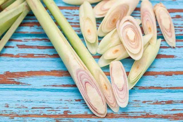 lemongrass, essential oils for gout