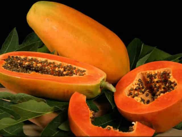 Papaya fruit to boost immunity