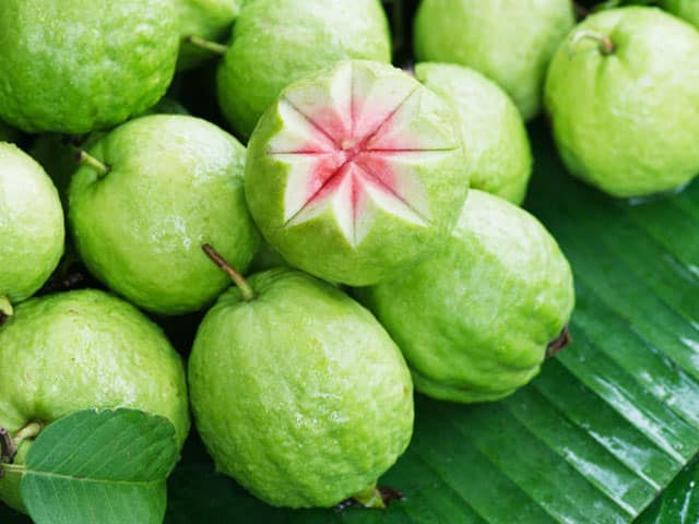 boosting immunity fruit guava
