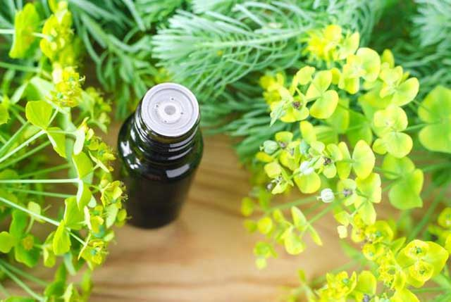 Essential Oils For Menstrual Pain 4