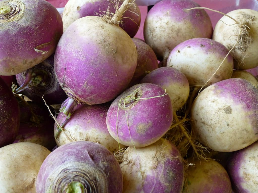 Amazing Health Benefits of Turnips